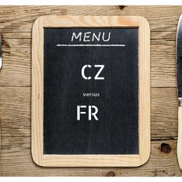 CZ vs FR